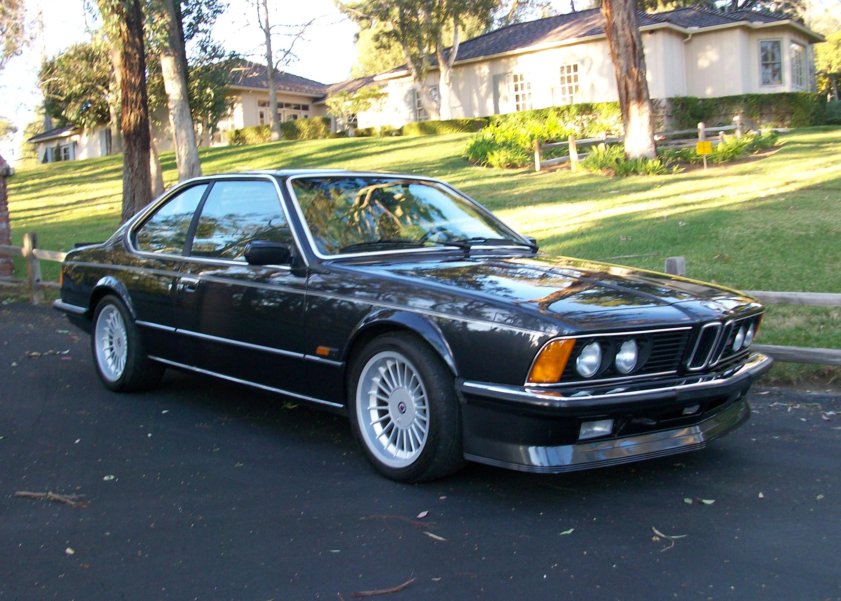paint san side correction bmw collection detail diego rare google